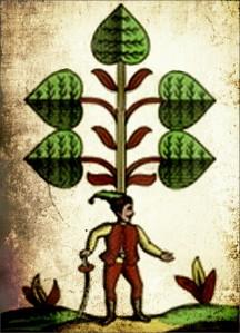 zelena sedma upr2